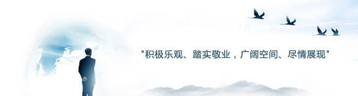 武汉拓普联合电力设备有限公司招聘策略